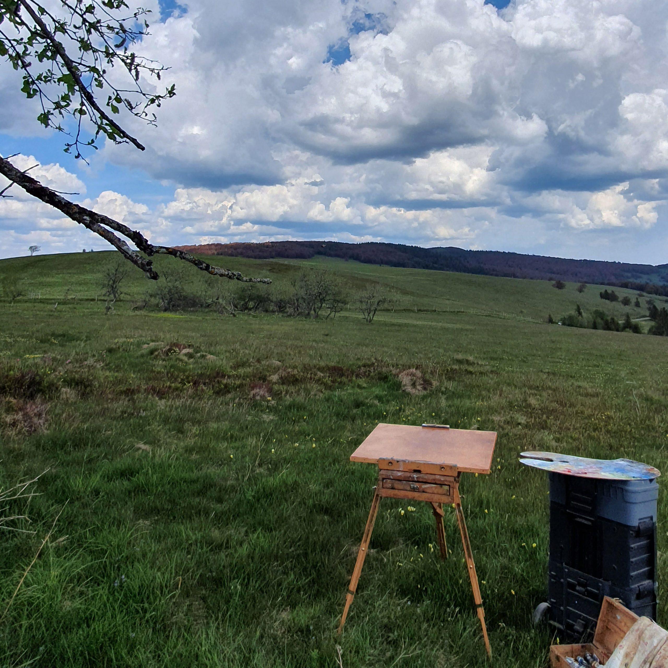 Atelier creatif - peinture- Gissinger-Mariele-Peinture-huile-Peinte-Artiste-Art-gm-Alsace-France-Vosges-Ballon d'alsace-Markstein
